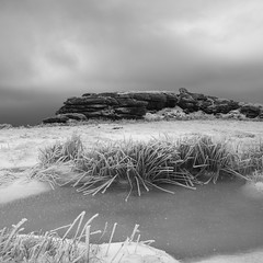 Out in the Cold (markgeorgephotography.co.uk) Tags: morning winter england snow cold southwest ice monochrome sunrise landscape dawn mono nationalpark wind monotone devon squareformat dartmoor squarecrop canonef24105mmf4lisusm formulaphoto markgeorge canon5dmkiii canon5dmk3