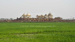 Historical graves, Shahpur Chakar (Ameer Hamza) Tags: green history classic beautiful shrine muslim fields shrines sindh tombs muslimgraveyard mirs beautifulcountry beautifulpakistan sarsoon muslimrulers qubay shahpurchakar sarsoo ameerhamzaadhia ameerhamzaphotography sitessindh historicalsitespakistan historicalsitessindh talpursandmirs