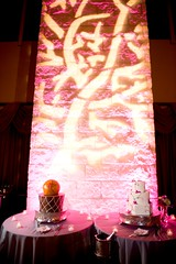 Pattern Projection - Pink Lighting - Barton Creek Country Club