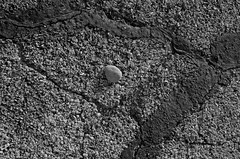 Parking Lot Abstract (Paul Glover) Tags: blackandwhite abstract tarmac stone concrete parkinglot ground asphalt cracked