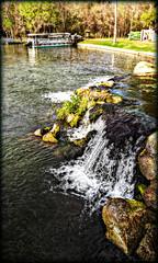 Falls at DeLeon Springs (Chris C. Crowley) Tags: water boat waterfall moss rocks scenic springs algae chriscrowley deleonspringsflorida fallsatdeleonsprings