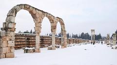 Anjar (14) (evan.chakroff) Tags: city lebanon urbanism umayyad 700s 8thcentury anjar evanchakroff chakroff umayyadcity