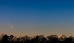 PanStarrs C-2011 L4 and Crescent Moon-4 (Scott Thompson - inaap.com) Tags: city trees moon ferry scott alabama crescent observatory walker astronomy pan alexander treeline comet thompson l4 starrs panstarrs c2011 cometpanstarrsc2011l4