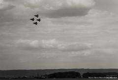 En grupp Draken (hjakse) Tags: f10 airshow sverige 35 draken saab ngelholm flygdag j35 flygvapnet skneln barkkra