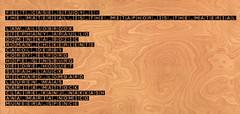 Credits (Hope Ginsburg) Tags: wool felt doha vcuq tasmeem