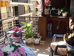 Fabulosa terraza muy soleada con vista a calle Tomás Ortuño. Solicite más información a su inmobiliaria de confianza en Benidorm  www.inmobiliariabenidorm.com