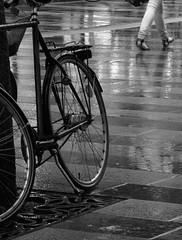 Rainy day (cats_in_blue) Tags: street blackandwhite bw rain bike blackwhite rockon yourockwinner yourock1st yourockunanimous herowinner ultraherowinner yourockrockon
