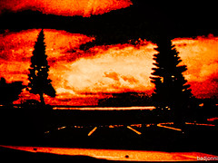 I thought of car (badjonni) Tags: red sky abstract tree silhouette filmscan
