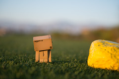 Danbo Ready to Tee Off (Phoenix Rising Photography) Tags: california ca grass yellow golf toy march amazon nikon pin bokeh golfing golfcourse figure pga tee indio d800 lightroom danbo 2013 terralago