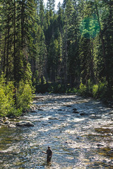 (The Noisy Plume) Tags: idaho fishing flyfishing river stream woods forest nature explore wade