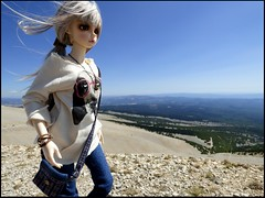 Rose at the Mont Ventoux - 1911 m (Essential Resinescence) Tags: feeple rin moe fl fairyland bjd resin doll poupee