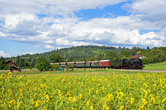 38 3199 (Daniel Powalka) Tags: wetter eisenbahn railroads railways railway rail train trainspotting trainspotter tree zug photo photographer photos photography photographie photonawards panorama natur spotting schiene deutschland d750 fotografie fotograf foto flickr flickrclickx flickraward flickrcenter fotos flickrphotosperfect award flickrtravelaward awardflickrbest flickrawardgroup goldstaraward nikonflickraward flickrphotoaward artland badenwürttemberg tälesbahn br38 loco landschaft landscape landschaften lokomotive lokomotiven lokführer