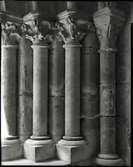 Abbaye de l'Epau (Philippe Torterotot) Tags: 4x5 chamonix45n2 fomapan100 largeformat grandformat analog film architecture lemans sarthe paysdelaloire france argentique