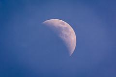The Moon (malc1702) Tags: moon bluesky moonduringtheday nature nikond7100 tamron150600 randompic