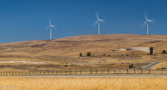 Windmill, Livermore (katiewong511) Tags: technology windpower landscape livermore nature outdoor windmills ranch hill barn california bayarea eastbay