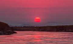we rarely get to see the sun like this (Sribha Jain) Tags: sunset alviso haze evening smoke sanjose ca california alvisomarinecountypark bay pacific mountains
