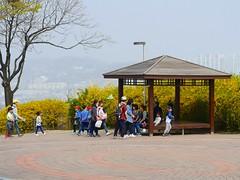 Naksan Park (Travis Estell) Tags: ihwa ihwadong jongno jongnogu korea mountnaksan naksan naksanmountain naksanpark republicofkorea seoul southkorea
