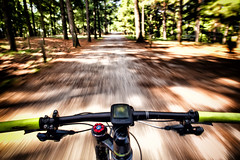 Salgo in bici e sono felice!! (fil.nove) Tags: pov pointofshot canong7x compactcamera 1sensore canonpowershot canon mtb vtt mountainbike mountainbiking motionblur blurred sfocato actionphoto action parcodellamaddalena torino turin italy italia piemonte ci cycling bikebyshooting bosco bush trees alberi photoshopcs5 colorefex cannondaleflashcarbon3 cannondale f29
