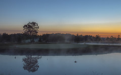 Foggy Start (corybeatty) Tags: sunrise sun trees golf reflection water light beauty ontario canada course fog mist