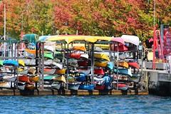 Rack 'em up (jmaxtours) Tags: torontoharbour toronto torontoontario portoftoronto port lakeontario canoes