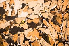 The Battle (Thomas Hawk) Tags: conradmarcarelli manhattan met metropolitan metropolitanmuseum museum nyc newyork thebattle themetropolitanmuseumofart usa unitedstates unitedstatesofamerica painting