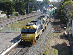 NR71-NR57-8118 (damo2016 photos) Tags: nr57 nr71 8118 nrclass pn exnsw freightcorp freightrail nationalrail highst maitland 2016