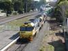 NR71-NR57-8118 (damoN475photos) Tags: nr57 nr71 8118 nrclass pn exnsw freightcorp freightrail nationalrail highst maitland 2016