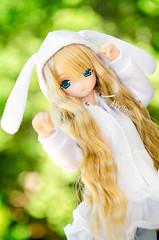 Bunny (Alix Real) Tags: azone azonedoll doll dolls int azonejp azoneint jp pureneemo pure neemo mio holiday regular ver version bunny hoodie dress mueca sudadera conejo conejito anime manga kawaii