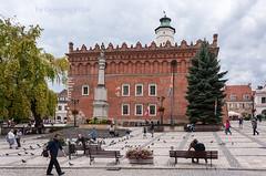 Market Square with the town hall (Grzesiek.) Tags: sandomierz town rynek marketsquare polska