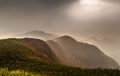 misty morning (canon-Tom) Tags: fog mist misty landscap landscape sun sunrise sunset mountains clouds sky light travel nature taipei taiwan exposure sunlight
