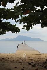 Ihla grande (nur_castillo) Tags: lanscape beach deck kids muelle tree sea amendois ihla grande brasil travel backpacker summer