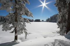 mummelsee (jomaot) Tags: schnee winter light snow cold ice beautiful sunshine weather canon wow germany season landscape deutschland licht frozen frost bluesky sunburst icy kalt eis landschaft schwarzwald blackforest 1022 winterwonderland klte winterlandschaft 10mm mummelsee winterimpression sonnenstern seibelseckle jomaot