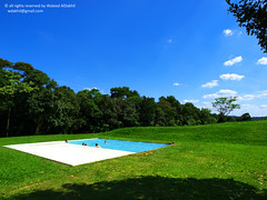 let's swim (Waleed Ibrahem) Tags: life park new flowers blue trees brazil sky sun color tree beach nature water beautiful weather clouds swimming swim wonderful minas gerais br olympus things diamond pools  ibrahim zuiko waleed swd     inhotim brumadinho  1260mm diamoonds zwd e620  aldokhail aldakhil deeloo wdakhil