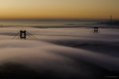 Fog Splitter (rootswalker) Tags: fog sunrise goldengatebridge lowfog 2013 march1st nikon70200mm slackerhill fogevent