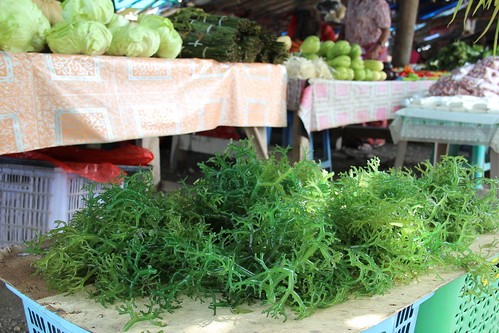 Locally farmed seaweed sold at a roadside vegetable stall in Dili, Timor-Leste. Photo by Holly Holmes, 2013