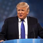 From flickr.com: Donald Trump {MID-295541}