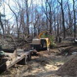 "Lot Clearing Long Island NY • <a style=""font-size:0.8em;"" href=""http://www.flickr.com/photos/51993051@N08/8596899729/"" target=""_blank"">View on Flickr</a>"