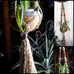 Mushroom Basket Natural Jute Handmade Macrame Plant Hanger (Macramaking- Natural Macrame Plant Hangers) Tags: red plants brown plant green mushroom hippies woodland mushrooms happy beads colorful basket natural handmade chocolate farm oneofakind decorative character creative adorable funky retro zen naturist hanging americana cheerful 1970s decor planter brass frontporch groovy hang homedecor hanger macrame stylish spiderplant madeinusa woodsy accessory conversationpiece hangingbasket naturalist shabbychic artscrafts jute officedecor containergardening macram planthanger woodbeads alternating planthangers hangingplanter macramebeads decorativeknotting squareknots macrameplanthanger macramakin macramaking httpwwwetsycomshopmacramaking macramecord macrammacramaking herbhanger naturaljute macrametechnique chinesecrownknots twistingsinnets macramehangingbasket macrameweaving macramelove