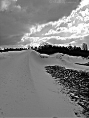 #ForTheLoveOfBlackAndWhite (Wishtography) Tags: winter snow nature snowdrift hdr snowdunes capturedmoment streamzoo fortheloveofblackandwhite thiscooledit wishdr