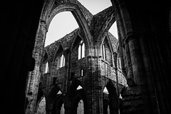 "Tintern Abbey • <a style=""font-size:0.8em;"" href=""http://www.flickr.com/photos/32236014@N07/8635077267/"" target=""_blank"">View on Flickr</a>"