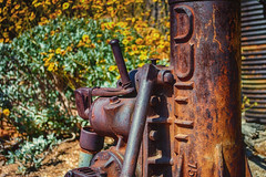 Duff (hbmike2000) Tags: metal nikon rust bokeh pipe d200 hdr duff deserthotsprings oneword burb cabotspueblomuseum hbmike2000 113picturesin2013 someprettyflowerinthebackground