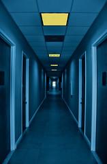 Blue Hall (DigitalLUX) Tags: blue light building lines yellow architecture buildings lights hall edificios nikon doors floor edificio perspective perspectiva pasillo artisticphotography architecturaldetails lneas digitallux