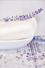 _MG_9206 (_qll) Tags: wood stilllife nature still bath lavender product lavendel