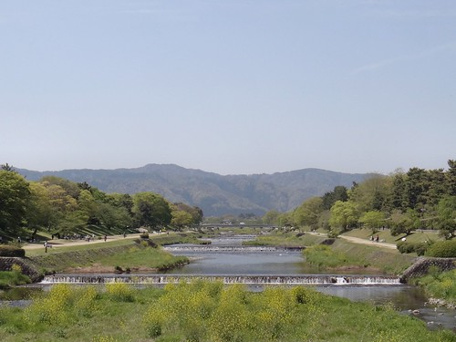 Spring River. A View of the Kamo River, Kyôto, Japan