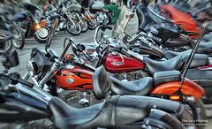 Aug 6 2016 - Line 'em up, line 'em all up (lazy_photog) Tags: lazy photog elliott photography sturgis south dakota black hills classic rally races motorcycle harley davidson party babes bikers 080616sturgisday1