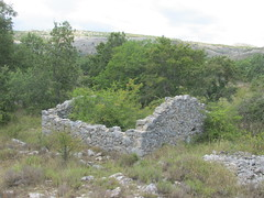Shell (bakpacker) Tags: abandoned ruins stonework oldstones sheepcountry rural herding pastoral coldevence provence alpesmaritimes cotedazur france
