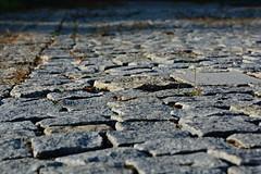 Brick road (MartinMayer6) Tags: brick road way sunnyday fototrip