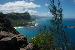 Makapu'u Cliffside (bastinaaron) Tags: makapuu cliff hawaii oahu ocean pacific