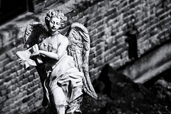 Angel Statue (07victor84) Tags: angel blackandwhite inri abandoned statue amateur canon