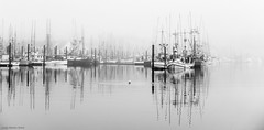 16-11590.jpg (kgsix) Tags: usa yaquinariver fvs bayfront lincolncounty newport yaquinabay fog vehicles oregon boatsships boats fishingboats ships unitedstates us